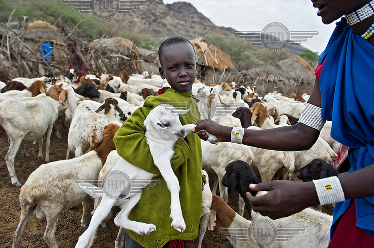 A young Masaai holding a small goat in a kraal, an enclosure for cattle or other livestock, on the road between Arusha and Loliondo. The government of Tanzania is planning to turn this dirt track into a highway that will connect isolated communities and bring much needed development to the marginalised Masaai. However, the highway will cut straight through the Serengeti National Park, a World Heritage Site, disrupting animal migration, which would have disastrous consequences for the entire park ecosystem.