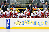 Bench of Detroit Red Wings during ice-hockey match between Los Angeles Kings and Detroit Red Wings in NHL league, February 28, 2011 at Staples Center, Los Angeles, USA. (Photo By Matic Klansek Velej / Sportida.com)