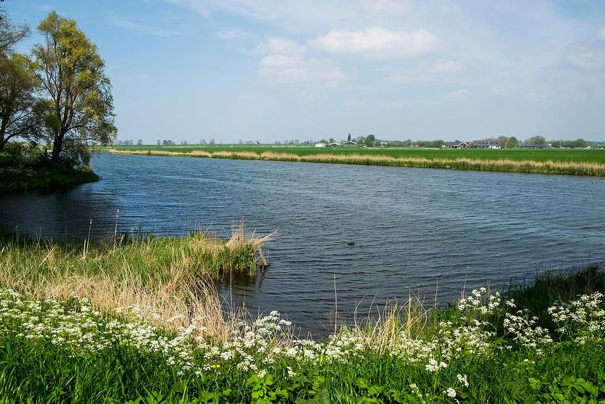 Nederland, Muiden, 20170506<br /> Buitengebied van muiden <br /> <br /> <br /> Foto: (c) Michiel Wijnbergh