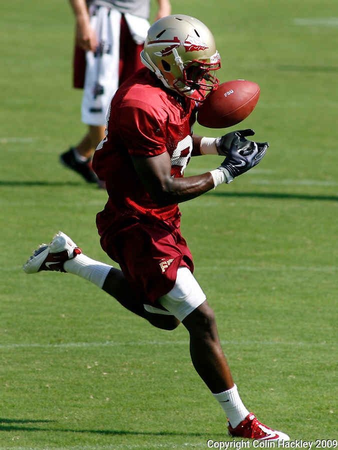 TALLAHASSEE, FL 8/8/10-FSU-080810 CH-Florida State's  Christian Green makes a catch during practice Sunday in Tallahassee. .COLIN HACKLEY PHOTO