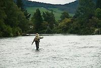 Mann kaster med flue i Tongariro River på New Zealand ----- Man casting in Tongariro River, New Zealand