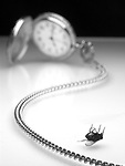 A dead fly and a pocket watch