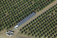 aerial view above solar panel central valley California agriculture