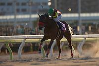 01-25-17 TCK Jo-o Hai Ohi Japan