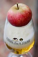 Europe/France/Normandie/Basse-Normandie/14/Calvados/Pays d'Auge/Cambremer: Cidre du Pays d'Auge - pomme et verre de cidre