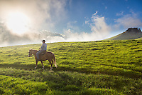 A guide from Paniolo Adventures horseback rides over the mystical hills of Kohala; this part of Kohala is in Waimea, Big Island of Hawai'i.