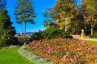 The Rose Garden (Rosengarten) with the Munster (Cathedral of Bern) in background, Bern, Canton Bern, Switzerland