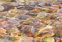 &quot;WAITING TO EXHALE&quot;<br />