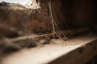 Dusty cobwebs in derelict building