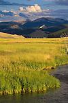 Flint Creek Mountains and grassy meadow near Phillipsburg, Montana
