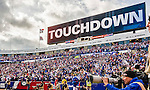 19 October 2014: Buffalo Bills fans cheer the game winning touchdown play, with seconds to go in the fourth quarter against the Minnesota Vikings at Ralph Wilson Stadium in Orchard Park, NY. The Bills defeated the Vikings 17-16 in a dramatic, last minute, comeback touchdown drive. Mandatory Credit: Ed Wolfstein Photo *** RAW (NEF) Image File Available ***