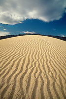 739650101 ripple patterns in the dunes mesquite sand dunes in death valley national park california