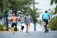 Coolangatta, Queensland, Australia. (Tuesday February 18, 2014) –  The current World Surfing Champion Mick Fanning (AUS) and Leo Fioravanti (ITA) running hills during a training session with Fanning's coach Nam Baldwin (AUS) at Coolangatta, Queensland, Australia on Tuesday February 18, 2014   Photo: joliphotos.com