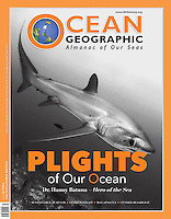 Cover story in Ocean Geographic about how shark tourism in Malapascua is helping the locals rebuild their lives after Typhoon Haiyan (Yolanda) caused widespread damage.