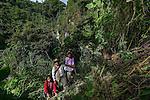 22 noviembre 2014. <br /> Mar&iacute;a Francisco, de 50 a&ntilde;os, en la selva de Santa Cruz de Barillas (Guatemala), un lugar sagrado para los mayas. Ella toma de la naturaleza todo lo que necesita para sobrevivir.<br /> La llegada de algunas compa&ntilde;&iacute;as extranjeras a Am&eacute;rica Latina ha provocado abusos a los derechos de las poblaciones ind&iacute;genas y represi&oacute;n a su defensa del medio ambiente. En Santa Cruz de Barillas, Guatemala, el proyecto de la hidroel&eacute;ctrica espa&ntilde;ola Ecoener ha desatado cr&iacute;menes, violentos disturbios, la declaraci&oacute;n del estado de sitio por parte del ej&eacute;rcito y la encarcelaci&oacute;n de una decena de activistas contrarios a los planes de la empresa. Un grupo de ind&iacute;genas mayas, en su mayor&iacute;a mujeres, mantiene cortado un camino y ha instalado un campamento de resistencia para que las m&aacute;quinas de la empresa no puedan entrar a trabajar. La persecuci&oacute;n ha provocado adem&aacute;s que algunos ecologistas, con &oacute;rdenes de busca y captura, hayan tenido que esconderse durante meses en la selva guatemalteca.<br /> <br /> En Cob&aacute;n, tambi&eacute;n en Guatemala, la hidroel&eacute;ctrica Renace se ha instalado con amenazas a la poblaci&oacute;n y falsas promesas de desarrollo para la zona. Como en Santa Cruz de Barillas, el proyecto ha dividido y provocado enfrentamientos entre la poblaci&oacute;n. La empresa ha cortado el acceso al r&iacute;o para miles de personas y no ha respetado la estrecha relaci&oacute;n de los ind&iacute;genas mayas con la naturaleza. &copy; Calamar2/Pedro ARMESTRE<br /> <br /> The arrival of some foreign companies to Latin America has provoked abuses of the rights of indigenous peoples and repression of their defense of the environment. In Santa Cruz de Barillas, Guatemala, the project of the Spanish hydroelectric Ecoener has caused murders, violent riots, the declaration of a state of siege by the army and the imprisonment of
