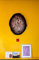 Detail of a tortoise shell hanging on the wall of the house of artist Mâkhi Xenakis and her husband David Rappelle