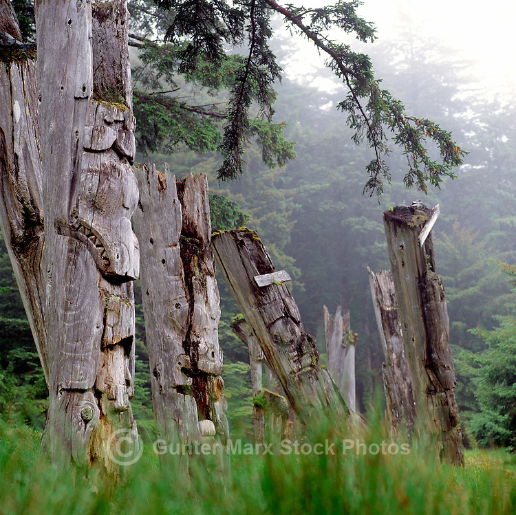 Haida Gwaii (Queen Charlotte Islands), Northern BC, British Columbia, Canada - Historic Haida Mortuary Totem Poles at Ninstints (UNESCO World Heritage Site) on Anthony Island (Skung Gwaii), Gwaii Haanas National Park Reserve and Haida Heritage Site