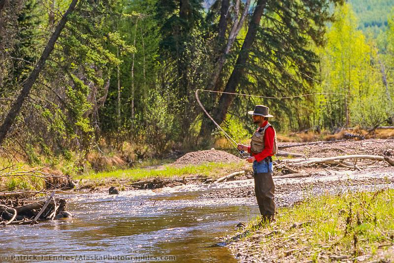 Man fly fishing on the Chatanika river, interior, Alaska.