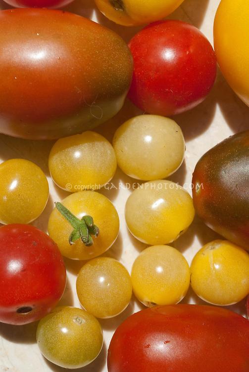 Tomatoes mixture of cherry, yellow, San Marzano pasta plum, cream colored, heirloom types