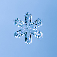 Snowflake Peridot - Stellar Plate Snowflake