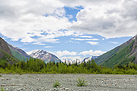 Scenic view looking toward Eagle Glacier in the Icicle Creek Wilderness region of Chugach State Park in Southcentral Alaska. Spring. Afternoon.