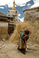 A woman carries straw in the village near the Mindroling Monastery. The monastery received significant damage during the Cultural Revolution. However, much has been restored and several new buildings have been built in the past twenty years including a new white chörten just outside the monastery.