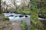 Golitha Falls, River Fowey, Cornwall, UK
