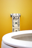 Toilet paper from 5 dollar bills with toilet in the foreground. Title: Money going down the drain.