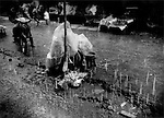 Vegetable vendor huddles under plastic in a torrential monsoonal rain in a market in Bago, Burma.