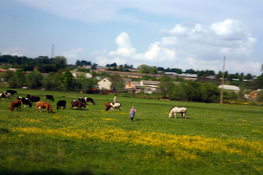 Views of the Polish countryside via train and bus.