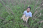 Crisanto Ba Pop shows his flood-damaged corn crop in Santa Elena, in Guatemala's Peten region.