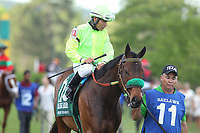 HOT SPRINGS, AR - APRIL 15: Conquest Mo Money #11, with jockey Jorge Carreno aboard before the Arkansas Derby at Oaklawn Park on April 15, 2017 in Hot Springs, Arkansas. (Photo by Justin Manning/Eclipse Sportswire/Getty Images)