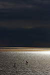Sailboats After a Storm