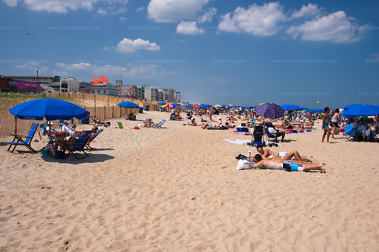 Apartments In Rehoboth Beach De