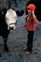 One young boy in red hat jacket 4H farm family shows off his livestock cattle steer cow project at Lancaster auction