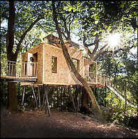 Britain's best treehouse.