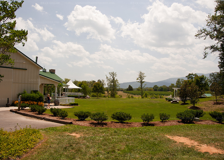 Walking from the parking lot, one approaches the tasting and event facility at Veritas Vineyards past vineyards, lawns, gardens, and wooded picnic areas.