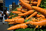 New York City: Carrots in Union Square