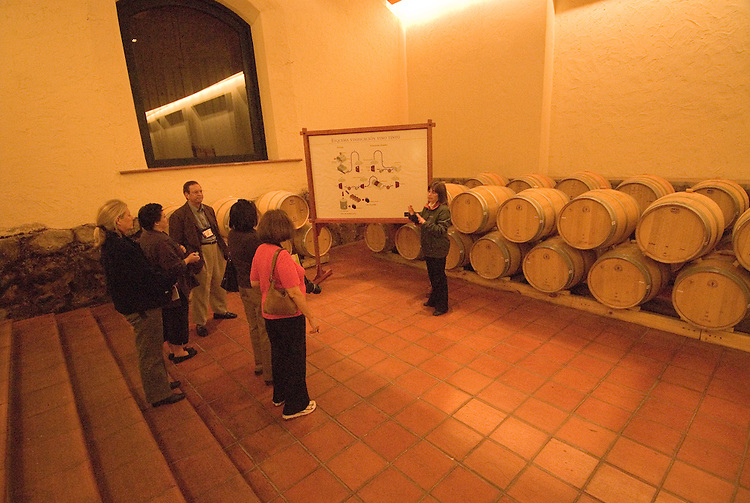 Chile Wine Country: Wine touring and barrels at Concha y Toro Winery, Vina Concha y Toro, near Santiago..Photo #: ch476-33805.Photo copyright Lee Foster, 510-549-2202, www.fostertravel.com, lee@fostertravel.com.