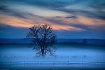 Moody morning landscape, Gettysburg battle field,, Adams County, Pennsylvania, USA