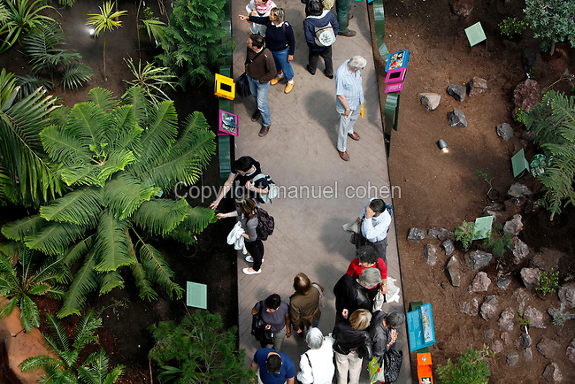 New Caledonia Glasshouse (formerly The Mexican Hothouse), 1830s, Charles Rohault de Fleury, Jardin des Plantes, Museum National d'Histoire Naturelle, Paris, France.  View from above of the interior of the glasshouse showing the newly planted Glasshouse which is divided into areas representing the four forest climates. Here see visitors in the central alley with the luxuriant vegetation of the humid forest on the left of the picture. The New Caledonia Glasshouse, or Hothouse, was the first French glass and iron building.