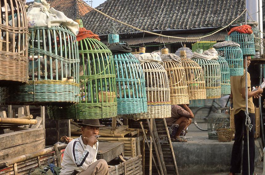 Indonesia, Java island, Yogyakarta: the bird market in Kota Ged&egrave;.<br /> Indonesia; Giava; Yogyakarta: il mercato degli uccelli di Kota Ged&egrave;