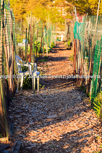 A walking path in an urban community garden.