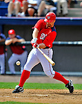 12 March 2012: Washington Nationals infielder Chad Tracy in action during a Spring Training game against the St. Louis Cardinals at Space Coast Stadium in Viera, Florida. The Nationals defeated the Cardinals 8-4 in Grapefruit League play. Mandatory Credit: Ed Wolfstein Photo