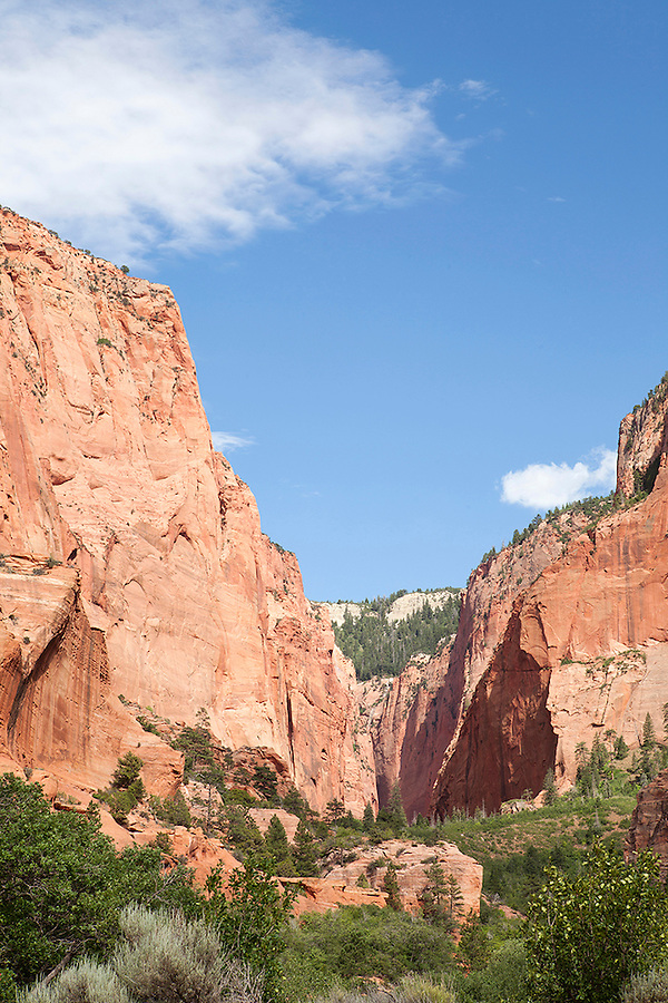 The Kolob Canyons area of Zion National Park in southwestern Utah, USA Zion National Park Kolob Canyons area, UTAH, USA