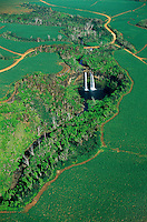 Aerial view of Wailua Falls among sugar cane fields, Hawaii, Kauai.