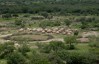 A cattle camp in the Boma-Jonglei Landscape is also home to some of the most spectacular and important wildlife populations, including  perhaps the largest wildlife migration in the world. An annual migration of  antelope called the white-eared kob may rival the famous wildebeest migration of the Serengeti in Kenya and Tanzania. (PHOTO: MIGUEL JUAREZ LUGO)