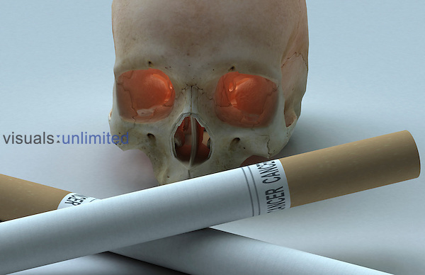 An image symbolizing death and cigarettes. The skull and two cigarettes are arranged in the 'skull and cross bones' position. Royalty Free