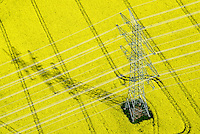 Hochspannungsmast auf Rapsfeld: DEUTSCHLAND, SCHLESWIG- HOLSTEIN,  (GERMANY), 01.05.2014: Hochspannungsmast auf Rapsfeld