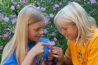 Kinder, Geschwister betrachten Blumen, Blume, Malve, Malva